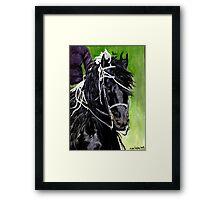 Freisian Horse Portrait Framed Print