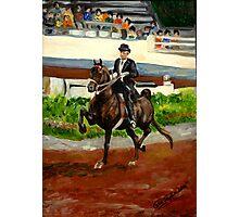 Morgan Horse Saddleseat Portrait Photographic Print
