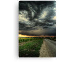 Sunflowers and Thunderstorms Canvas Print