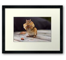 Small Pleasures Framed Print