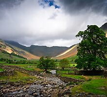 Bow Fell View by David Lewins