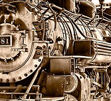 Steam Engine No 481 by Janet Fikar