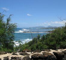 Kauai Coast  by aura2000