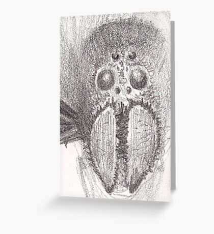 Spider Face Greeting Card