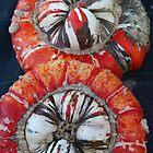 Pumpkin III by pixel-cafe .de