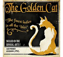 The Golden Cat Photographic Print