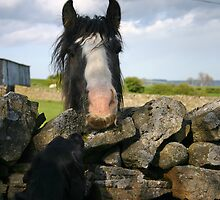 Holly and the horse with the handlebar moustache by johnnyjag