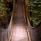 Suspended, Minnamurra, NSW by Malcolm Katon