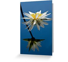 Water Lily Dream Greeting Card