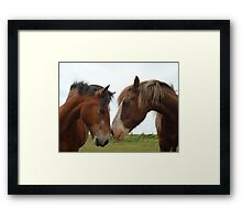 Love thy  NEIGH....bour Framed Print