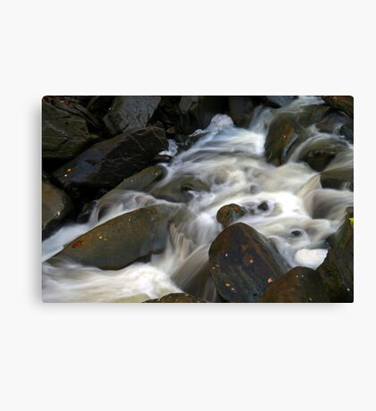 Smooth As Silk Canvas Print