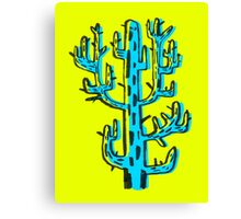 Cactus azul Canvas Print