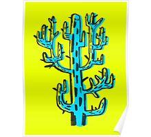 Cactus azul Poster