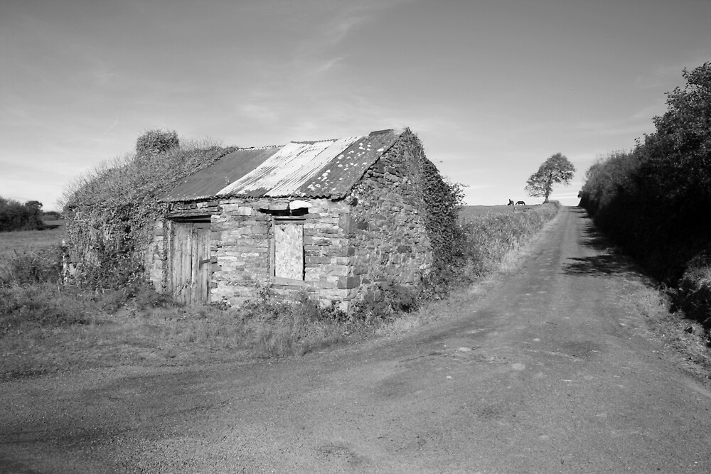 Rural county Clare cottage (Clare) by John Quinn