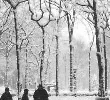 Winter Walk by newyorknancy