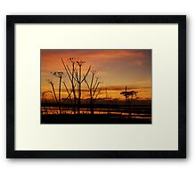 Tranquil Devonian Sunset Framed Print