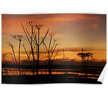 Tranquil Devonian Sunset Poster