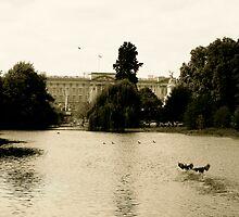 Buckingham Palace by Gursimran Sibia