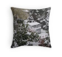 I'm so not ready for SNOW yet! Throw Pillow