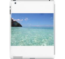 Crystal Clear iPad Case/Skin