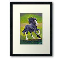 Shire Draft Horse Portrait Framed Print