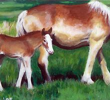 Belgian Mare and Foal Horse Portrait by Oldetimemercan