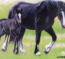 Clydesdale Mare and Foal Horse Portrait by Oldetimemercan
