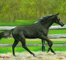 Beauty In Motion Quarter Horse Portrait by Oldetimemercan