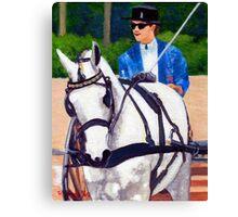 Quarter Horse Pleasure Driving Horse Portrait Canvas Print