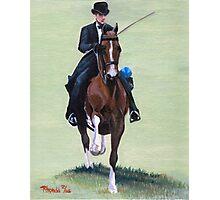 Elegance In Action American Saddlebred Horse Portrait Photographic Print