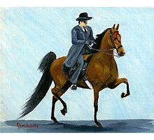 Mens Pleasure American Saddlebred Horse Portrait Photographic Print