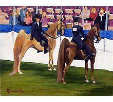 On The Rail American Saddlebred Horse Portrait Photographic Print