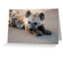 THE HYENA 'PUP' - THE KRUGER NATIONAL PARK, South Africa Greeting Card