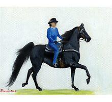 Western Pleasure American Saddlebred Horse Portrait Photographic Print