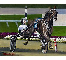Standardbred Racehorse Portrait Photographic Print