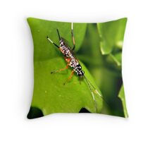 Insect on Leaf Throw Pillow