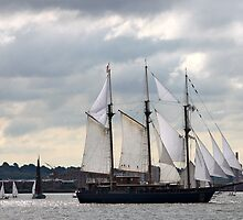 Sail Away! by Nadine Rippelmeyer
