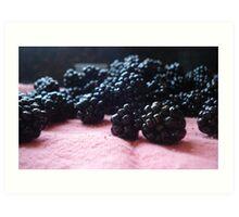 Blackberry Harvest Art Print