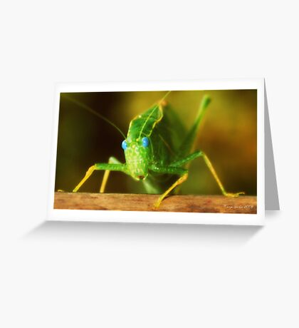 Bug Eyed Blue Greeting Card