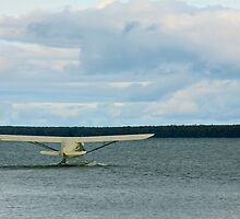 Island Hopper by Kate Purdy