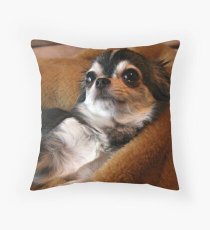 Little Charmer Throw Pillow