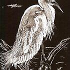 White Egret by Dawn B Davies-McIninch