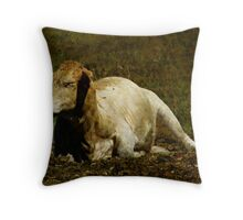 Catchin' Some Rays! Throw Pillow