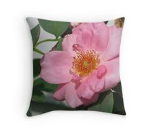 Wild pink rose Throw Pillow
