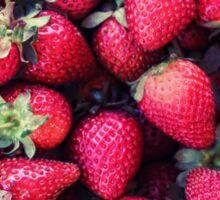 Summer Strawberries Sticker
