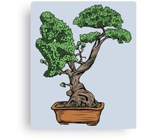 Bonsai Thinking Canvas Print