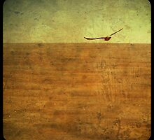 The Nullarbor. by Creative SweetArt
