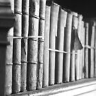 Old books by sboulanger