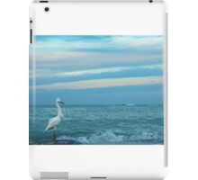 fishing at daybreak iPad Case/Skin