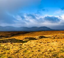 Grass Sea - Landscape on the Scottish Isle of Skye by Mark Tisdale